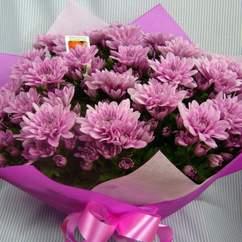 Bloomsbury Florists
