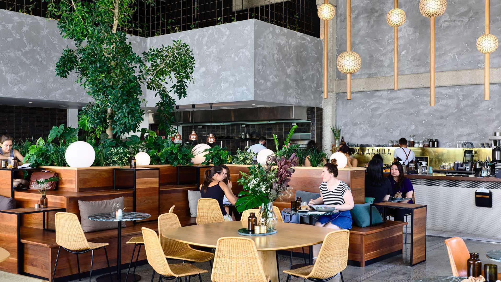 Cotta Cafe Melbourn : Melbournes best new cafes of 2017 concrete playground concrete