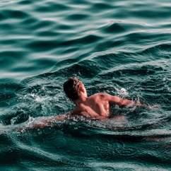 Swim the Bridge