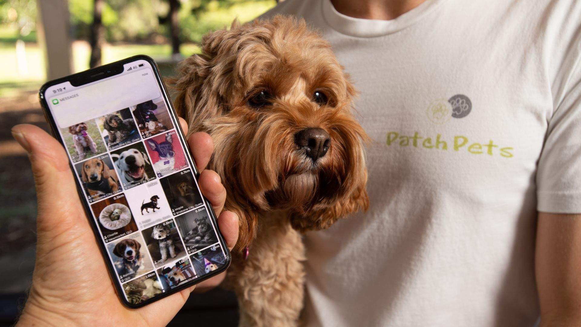 PatchPets Is the New Tinder-Style App That'll Help Your Dog Make Four-Legged Friends