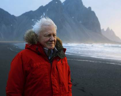 Check Out the Scenic Trailer for David Attenborough's New 'Seven Worlds, One Planet' Series